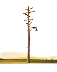 William Steiger: Telephone Pole #1